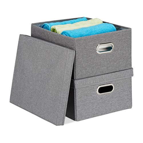Relaxdays Aufbewahrungsbox 2er Set, Faltbare Ordnungsbox mit Deckel, 25 Liter je Stoffbox, HBT 20,5 x 34,5 x 42 cm, grau