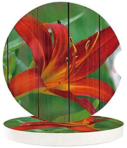 Juego de 4 posavasos absorbentes para coche, diseño de flores rojas sobre fondo de textura de madera, con una muesca de dedo para posavasos de auto fácil extracción, accesorios para coche