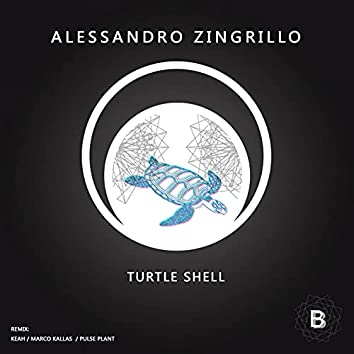 Turtle Shell EP
