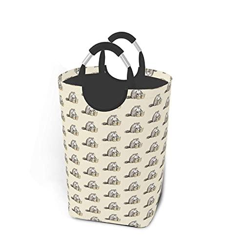 MNXOIA Cesto de lavandería Raccoon Play On Bongos Cesto de lavandería Plegable...