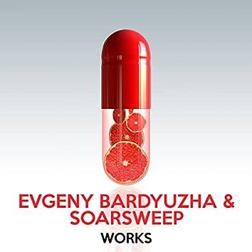 Evgeny Bardyuzha & Soarsweep Works