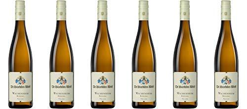 Weingut Dr. Bürklin-Wolf Wachenheimer Riesling trocken DE-ÖKO-003* Pfalz 2018 Wein (6 x 0.75 l)