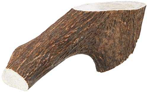 Antos Antler Natural Dog Chew (Size: Extra Large), clear