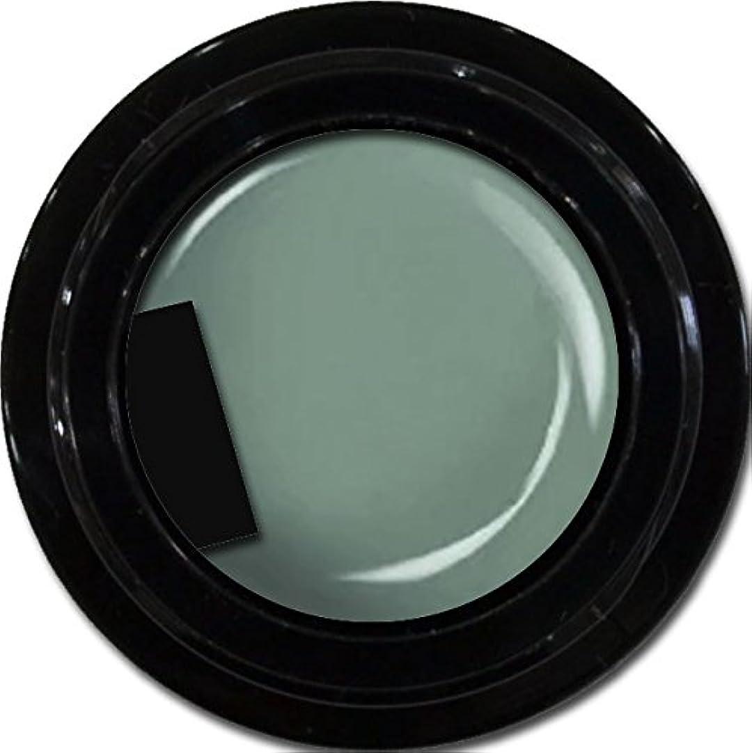 広大なニコチンヘッジカラージェル enchant color gel M716 Khaki 3g/ マットカラージェル M716 カーキー 3グラム