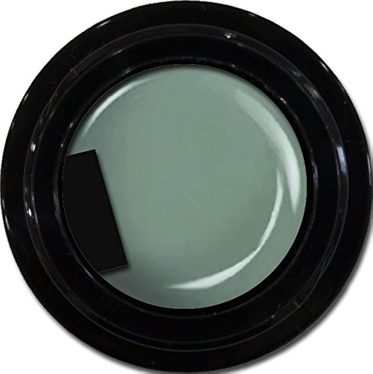 深いケニア会議カラージェル enchant color gel M716 Khaki 3g/ マットカラージェル M716 カーキー 3グラム