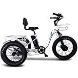 Emojo Electric Fat Tire Tricycle/Trike, 500W 48V Hybrid Bicycle/E-Bike...
