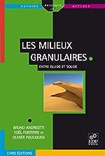 Les milieux granulaires - Entre fluide et solide d'Olivier Pouliquen