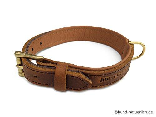 Lederhalsband für Hunde hellbraun cognac, gefüttert Messing Halsband aus Fettleder (40 (Halsumfang 26cm - 33cm))