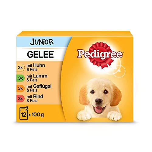 PEDIGREE Portionsbeutel Multipack Junior 4 Varietäten in Gelee mit Huhn, Rind+Leber, Geflügel, Lamm+Leber 4 x 12 x 100g