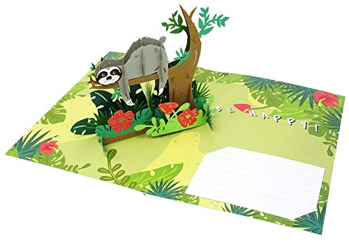 Take It Easy Fun Sloth - 3D Pop Up Greeting Card For All Occasions - Love, Birthday, Christmas, Goodluck, Congrats, Get Well - Message Note for Personalized - Amazing Gift - Thick Envelope, Fold Flat