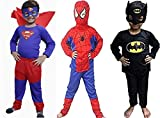 Superhero Costume Combo for Kids | Halloween Costume for Kids, See Dropdown List for Size Variations (Medium (4-6) Years)