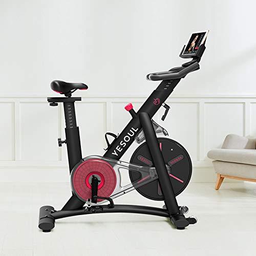 YESOUL S3 Smart Bicicleta Estatica para spinning de última generación con Bluetooth para conectar a smartphone o tablet, Negro (6971300260217)
