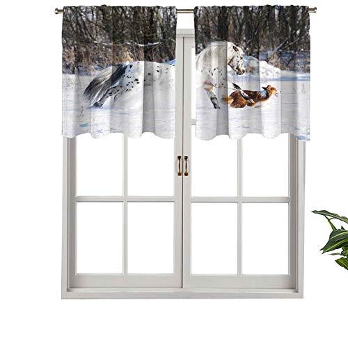 Hiiiman Cenefa para ventana de privacidad interior, panel legendario Appaloosa Pony Sable Border Collie Runs Gallop, juego de 2, 42 x 24 pulgadas para puerta corredera de patio o comedor