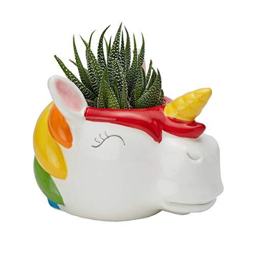 Rainbow Unicorn Ceramic Container Plant Pot Planter