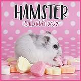 Hamster Calendar 2022: Monthly Square Calendar 2022-2023, 16 Month Calendar, Cute Animal Calendars, Home And Office Calendar