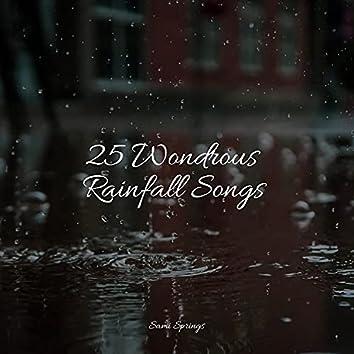 25 Wondrous Rainfall Songs