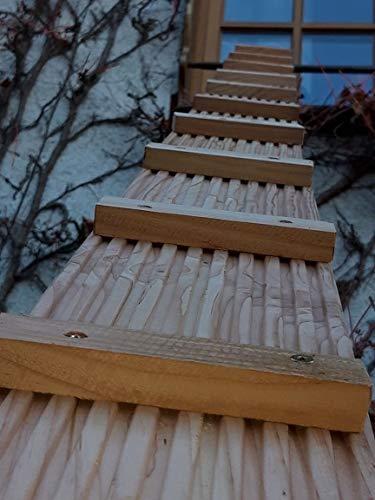 Kees Holzprodukte Katzenleiter aus Douglasienholz in Ihrer Wunschlänge