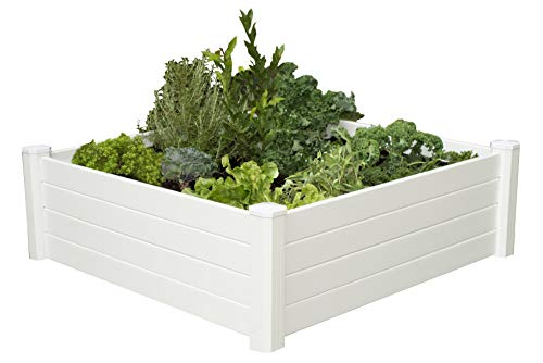 Elevated Planter Box as a Garden Bed