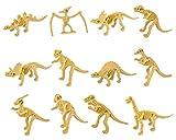 SCSpecial 12 Piezas de fósiles de Dinosaurio para niños Dino Bones Skeleton Toy Figuras para Science Play Rewards Dino Sand Dig - Set A