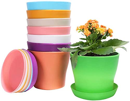 KAHEIGN 8 Pezzi 14cm Vasi per Piante in Plastica Colorati, Vasi da Fiori per Interni da 8 Colori con Contenitore per Piante con Vassoi per Pallet per Ufficio (14 x 12cm)