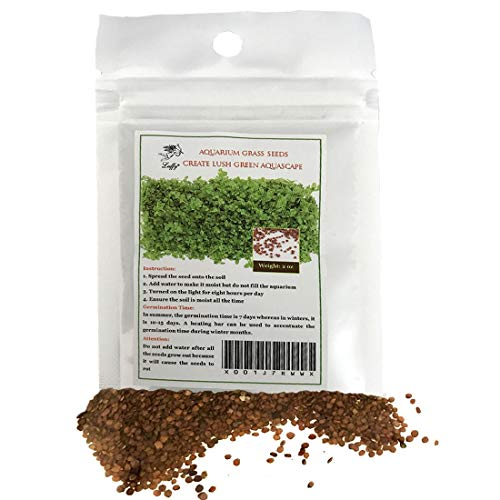 SunGrow Reptile Glosso Seeds, 2 Onzas, Promueve La Salud Fí