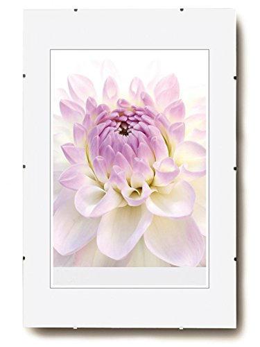 Rahmenloser Bilderrahmen Bildhalter Cliprahmen Fotorahmen Kunststoff Glas: Format: 50x70