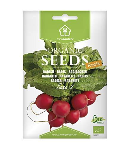 Radieschen Saxa, zertifizierte biologische Samen von Minigarden, enthält zwischen 500 und 750 Samen