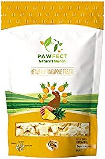 Pawfect Treats Pawfect Heavenly Pineapple Dog Chew Treats - Freeze Dried Treats for Dogs