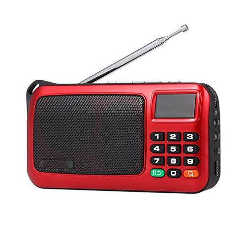 WSY Tragbare FM-Radio Lautsprecher Musik-Player, TF-Karte USB mit LED-Anzeige HiFi Stereo-Empfänger zum Joggen Waliking und Reisen,B