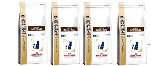 ROYAL CANIN Gastro Intestinal (4 x 4 kg) MEGA Pack Katzenfutter Lange VARFALLSDATUM