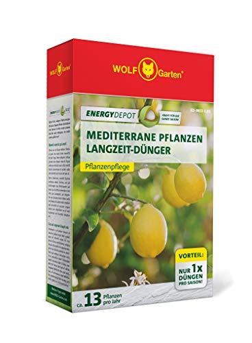 WOLF-Garten - Energy Depot Mediterrane Pflanzen-Langzeitdünger ED-MED 0,81 (für ca. 13 Pflanzen/Jahr); 3878005