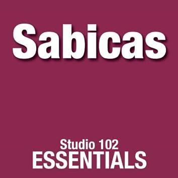 Sabicas: Studio 102 Essentials