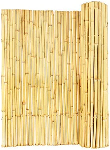 Backyard X Scapes Natural Rolled Bamboo Fence 75in D X 6ft H X 8ft L