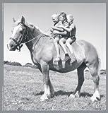 adhome 100074Puzzle Madera Sylvia Tay tres niños sobre un caballo 20piezas