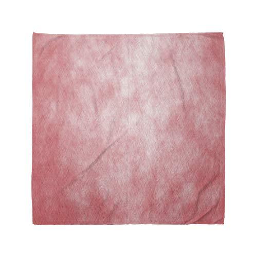 Ambesonne Unisex Bandana, Coral Pale Spring Watercolor, Salmon Peach