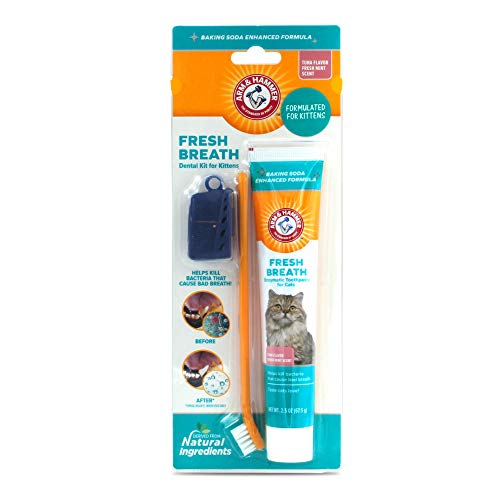 Arm and Hammer Fresh Breath Dental Kit for Kittens | Cat Toothbrush and Toothpaste with Baking Soda Cat Oral Care | Cat Dental Kit for Kittens in Tuna Flavor & Fresh Mint Scent for Cat Teeth Cleaning