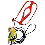 HIFONI Arnés y Correa para Loros, Cuerda de tracción Ajustable antimordida para Vuelo, Transporte para Entrenamiento de Aves, para cacatúas pequeñas, myna, pájaros pequeños (Color Aleatorio) (XS)