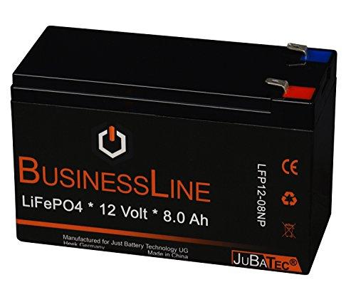 LiFePO4 Akku 12 V 8.0 Ah mit BMS (Batterie Management System)