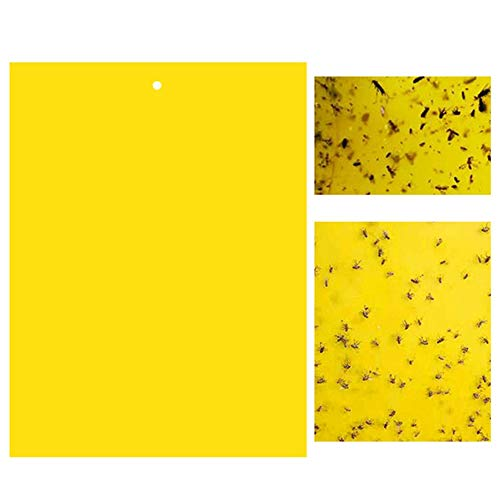 20 Pack Dual-Sided Yellow Sticky Traps for Flying Plant 6x8 Inches, Included 20pcs Twist Ties
