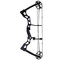10 Best Compound Bow for Hunting in 2021 5