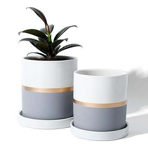 POTEY Cylinder Ceramic Plant Pot - 4.9 & 3.9 Inch Planters with Grey Golden Detailing for Indoor Plants Flower Succulent with Drainage Hole & Saucer, Set of 2