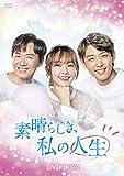 素晴らしき、私の人生 DVD-BOX2[DVD]