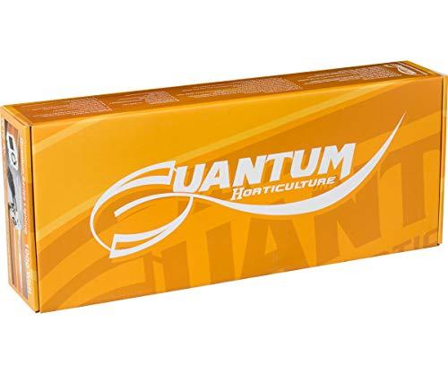 8. Quantum 1000W Digital Ballast