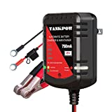 TANKPOW 12V 750mA Smart Battery Float Charger And Maintainer,Automatic 12V Powersports Battery Charger And Maintainer For Motorcycle,ATVs,And More, Double LED indicate Charging With Fuse Ring Terminal