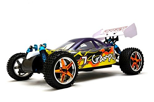 'RC Buggy