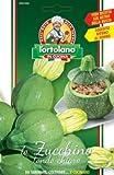sementi di ortaggi di varieta' strane & buone in bustine per uso hobbystico (zucchino tondo chiaro)