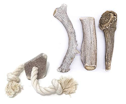 Perfect Pet Chews Economy Antler Dog Chew - Grade B-C, All Natural, Organic, Long Lasting Treats - Made from Naturally Shed Antlers in The USA - Large Treat - 3-Count Treat and Elk Large Rope Bundle