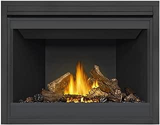 Napoleon Ascent B46NTR Direct Vent Natural Gas Burning Fireplace Millivolt Standing Pilot (46)