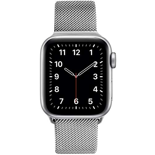 EurCross Stainless Steel Loop Magnetic Band Compatible with Apple Series5, Series 4, Series 3,Series 2,Series 1, Replacement Sport Strap Compatible with iWatch 42mm 44mm(Silver 42/44mm)