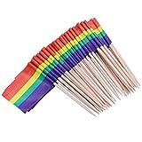 ULTNICE Laufende Flaggen-Auswahl-Miniflagge-Zahnstocher-Aperitif-Frucht-Stöcke für Cocktailparty-Satz von 100 - Regenbogen